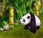 Panda in My Free Zoo